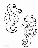 Seahorse Coloring Printable Seahorses Cool2bkids Drawing Getdrawings Getcolorings sketch template