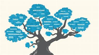Development Skills Grow Tree Professional Company Build