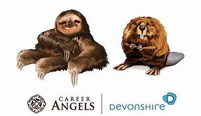 Sloth Beaver Lazy Busy Career Eu