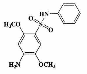 Paraaminophénylsulfamide : définition de PARAAMINOPHÉNYLSULFAMIDE, PARA-AMINOPHÉNYLSULFAMIDE , subst. masc.