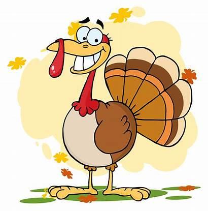 Turkey Cartoon Character Christmas Clipart Clip Safe