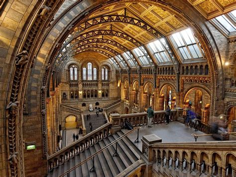 Natural History Museum In London, England Tourist