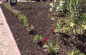 Alternative Zu Kies : steinbeet lavamulch blumenbeet gegen unkraut garden stones blumen schalen toepfe und mehr ~ Watch28wear.com Haus und Dekorationen