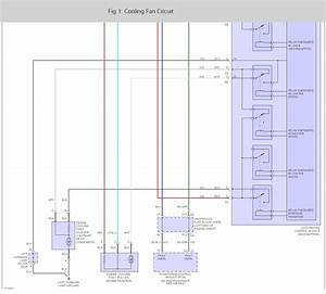 Ls1 Cooling Fan Wiring Diagram Ls1 Engine Diagram Wiring