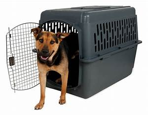 aspenpet pet porter kennel all pet cages With pet supplies dog crates