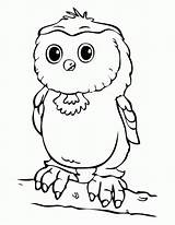 Owl Coloring Pages Babies Drawing Printable Sheets Cinderella Getdrawings Getcoloringpages Colors Burrowing Colornimbus sketch template