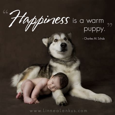 happiness   warm puppyinspirational quotes