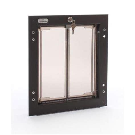 pet doors home depot plexidor performance pet doors 9 in x 12 in wall mount