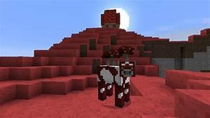Mooshroom Island Minecraft Project