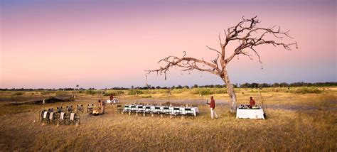 Africa Safari Packages - Matriarch Africa   Ecotourism ...