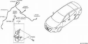 Nissan Maxima Windshield Washer Hose  System  Electrical