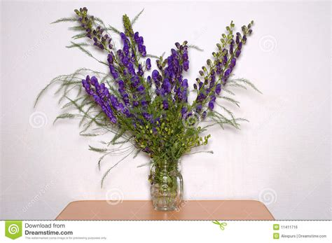 bunch  blue field flowers bouquet royalty  stock