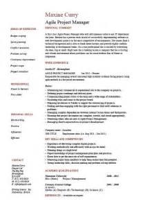 program manager resume doc doc 550711 project management resume bizdoska