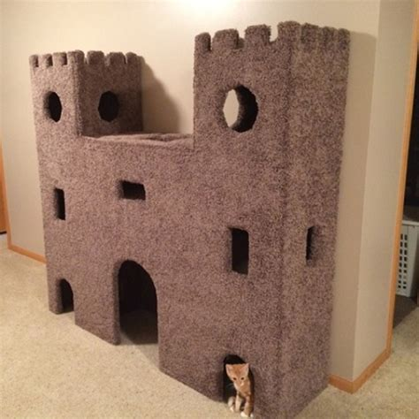 Seven spectacular cat trees to save your sofa   Ideal Home