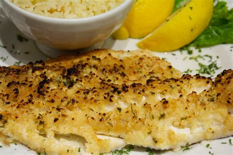 broiled scrod fresh baked scrod faneuil hall quincy market boston maine fish company