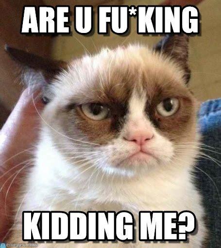 Grumpy Cat Meme Lion King