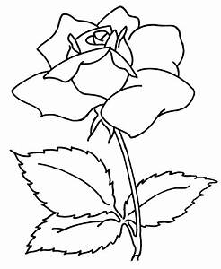 Cool Simple Flower Designs To Draw - ClipArt Best