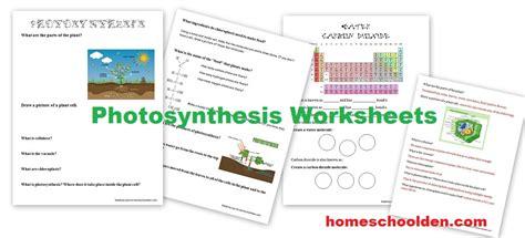 photosynthesis worksheets homeschool den