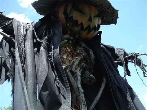 Scary Halloween Props by Hay Man The Curious Life And Times Of Scarecrows