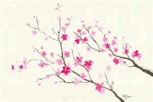 Drawn cherry blossom sakura tree - Pencil and in color ...
