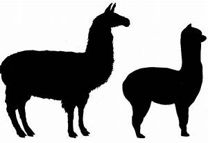 Alpaca svg, Download Alpaca svg