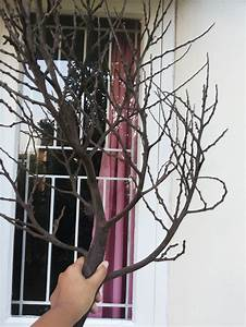 how to make a tree branch design decoration With what kind of paint to use on kitchen cabinets for real tree branch wall art