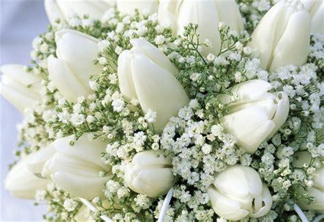 fiori bianchi matrimonio fiori matrimonio bouquet e addobbi quali saranno i