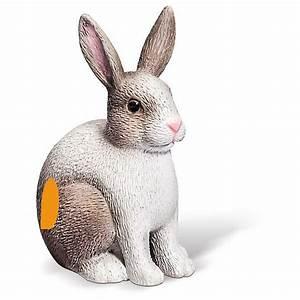 Kaninchenkäfig Für 2 Kaninchen : tiptoi spielfigur kaninchen tiptoi mytoys ~ Frokenaadalensverden.com Haus und Dekorationen