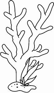 Coral Black And White Clipart
