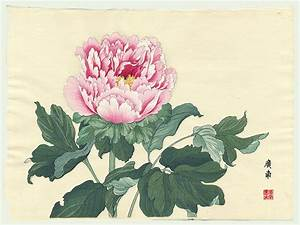 Tanigami Konan Japanese Woodblock Print Peony Series from ...