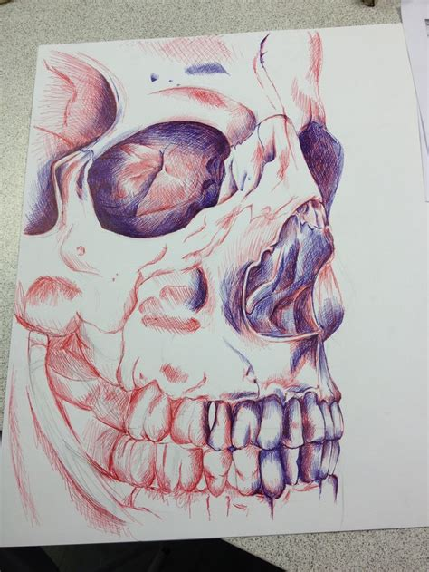The Best Observational Drawing Ideas Pinterest