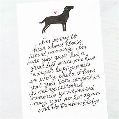 Sympathy Pet Card Write Loss Punkpost Comfort