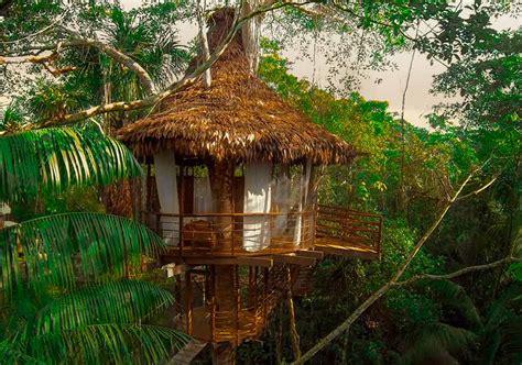 treehouse lodge  amazon iquitos peru
