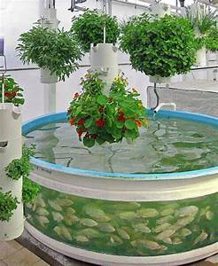 Aquaponic System Decorate Room Design For Your Home