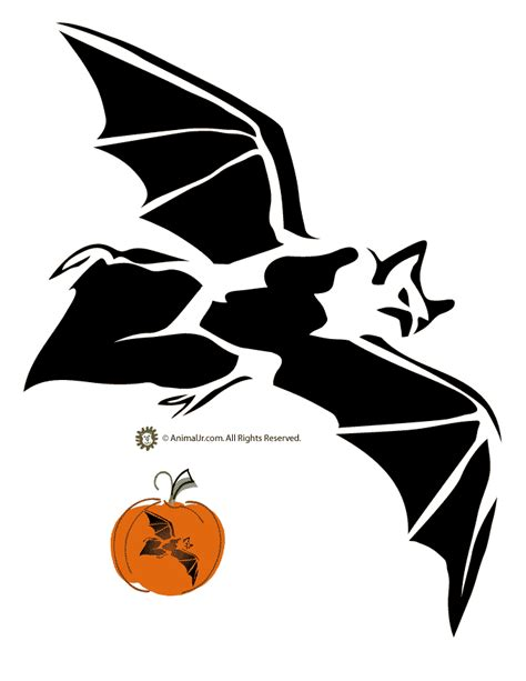 bat pumpkin stencil pin by dalphine on halloween carving stencils pinterest pumpkin stencil halloween bats
