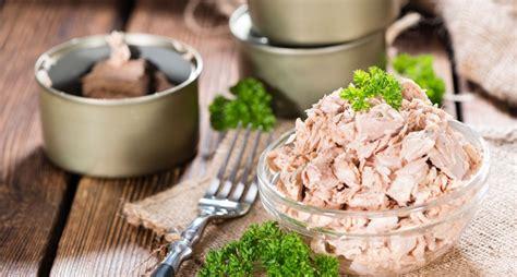 comment cuisiner le thon conserve de thon comment bien choisir ses conserves de
