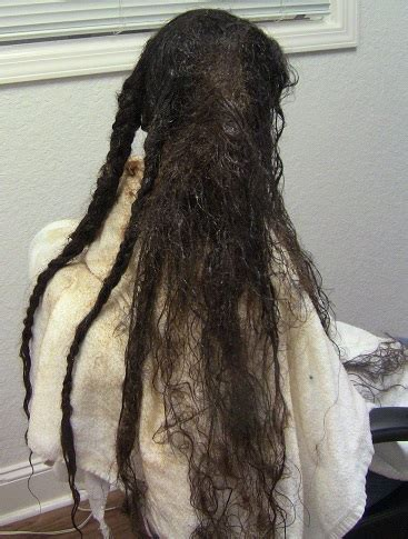 matted hair detangler matted hair dreadlock removal possibilities hair