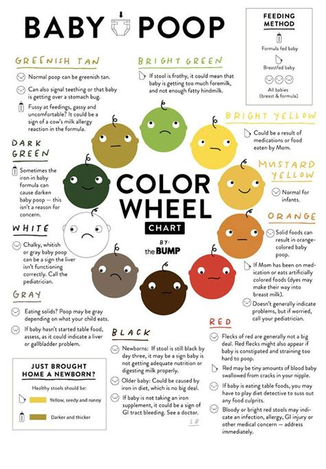 baby stool color best 25 baby ideas on baby boy babies