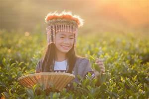 Wohin Im September : empfohlene reisezeit f r thailand urlaub in thailand erleben ~ A.2002-acura-tl-radio.info Haus und Dekorationen