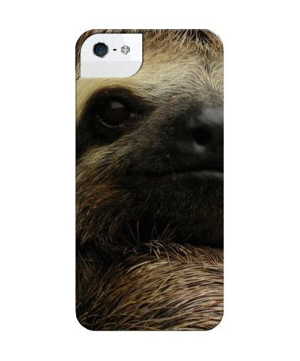 sloth iphone 116 best images about to sloth or not to sloth on
