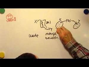 Alg2 Berechnen : beispielrechnungen zu umkehrfunktionen doovi ~ Themetempest.com Abrechnung