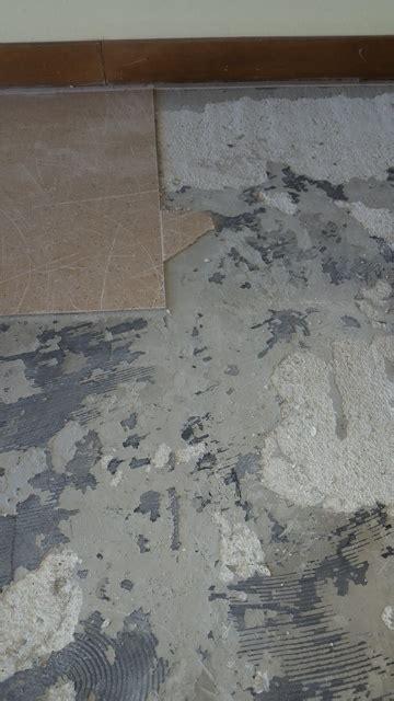 pavimenti palermo bonifica di pavimenti in vinil amianto linoleum a
