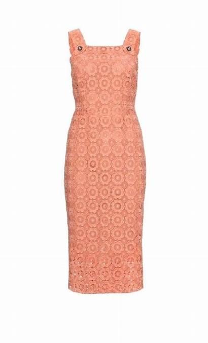Dolce Gabbana Eyelet Jeweled Shift Coral Stunning