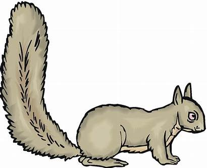 Squirrel Clipart Clip Running Squirrels Woodchuck Cliparts