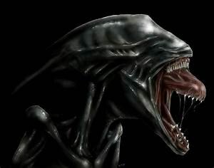 Deacon Alien - Prometheus (2012 film) Fan Art (31167789 ...