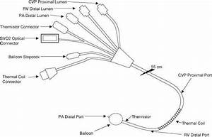 Cardiac Catheters Diagrams - Heart Failure