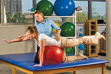 top physical therapy colleges  universities