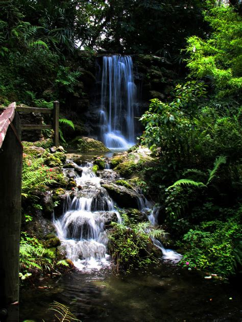 florida rainbow springs waterfalls fl park state dunnellon places waterfall fairy visit most trips don there onlyinyourstate these water things