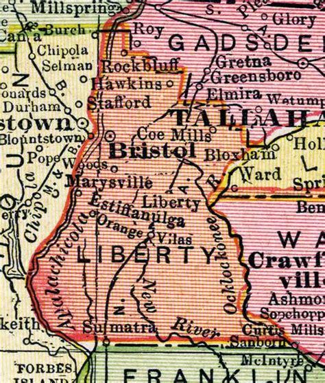Map of Liberty County, Florida, 1917