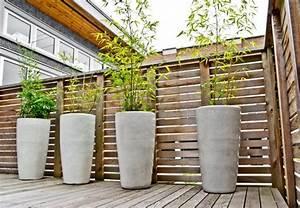 Bambou Brise Vue : plante balcon pour cacher vis vis 4 bambou en pot brise ~ Premium-room.com Idées de Décoration